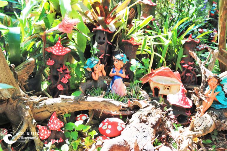 Fairy Garden - 1