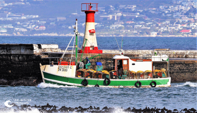 Kalk Bay Boats - Picture 2