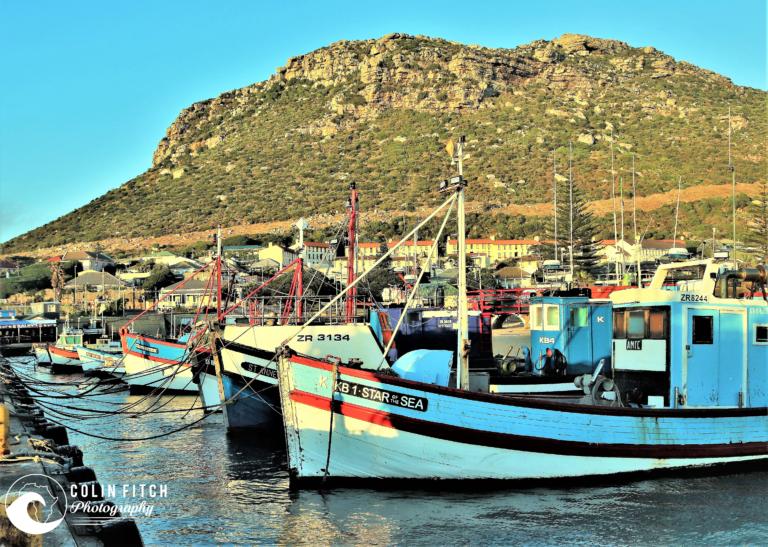 Kalk Bay Boat - Picture 7.