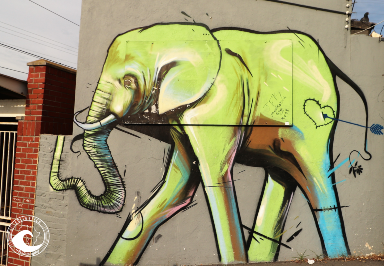 Muizenberg, Cape Town 4. Elephant.