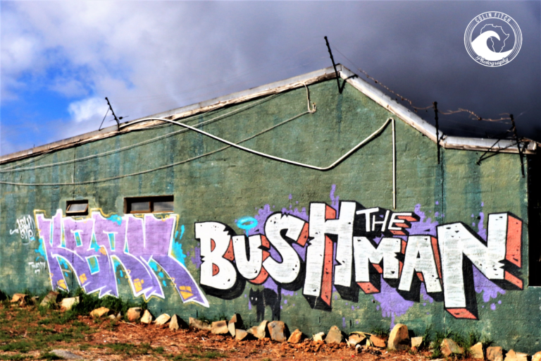 The Bushman, Woodstock, Cape Town.