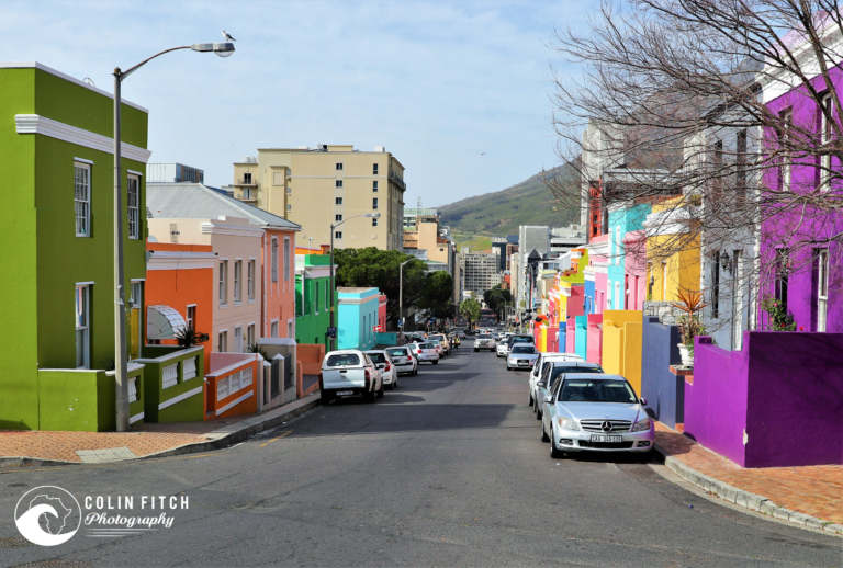 The Colors of the Bo-Kaap, Cape Town 2.