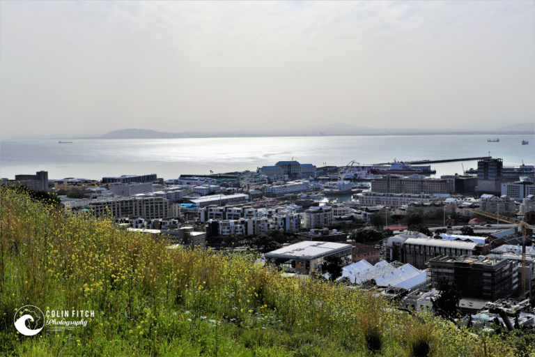 Waterfront view from Bo Kaap, Cape Town