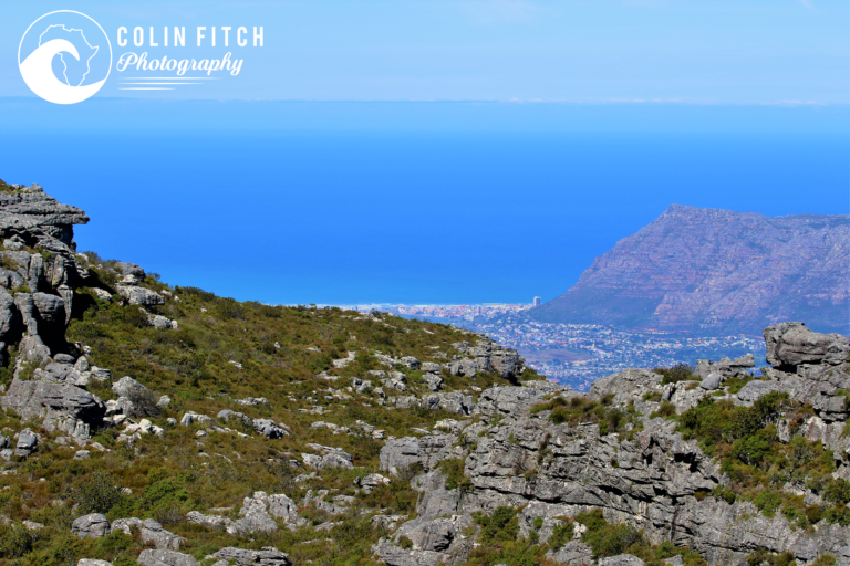 a look at Muizenberg from the back of Table Mountain