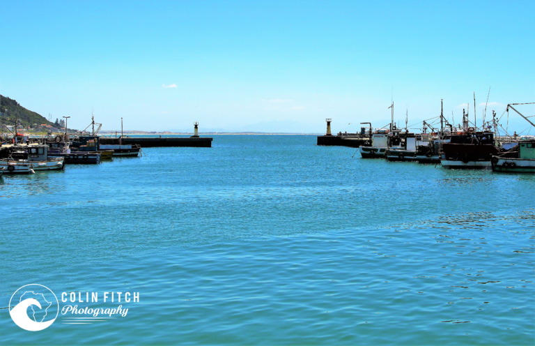 Looking out Kalk Bay Harbor